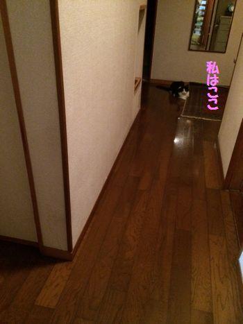 corner2.jpg