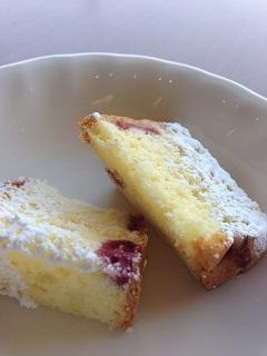 ガーデンナチュレ ふきのとう 本日のケーキ