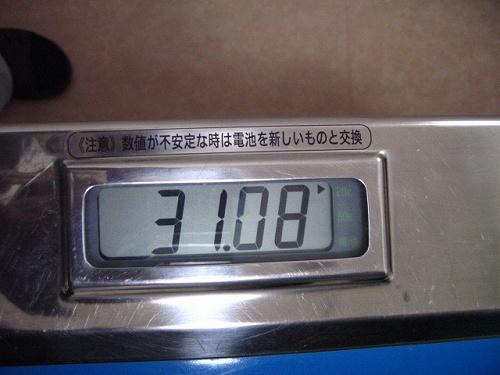 4IMG_7156.jpg
