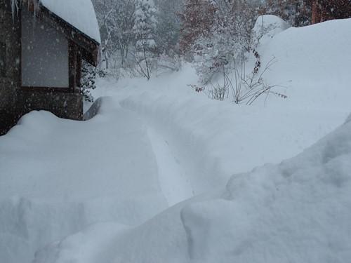 積雪70センチ超