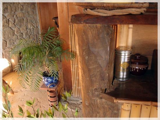 コーヒーの木の鳥 (1)