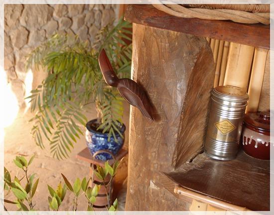 コーヒーの木の鳥 (3)