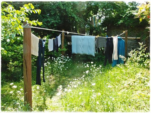 花を避けて洗濯物干してます
