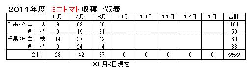 ミニトマト0809