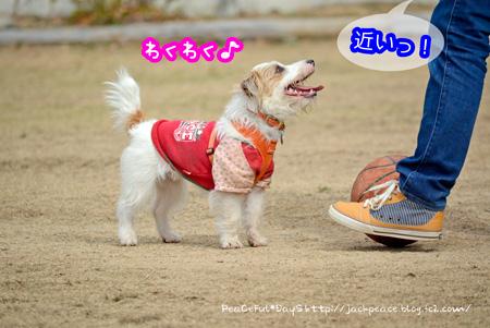 140221_yuasa3.jpg