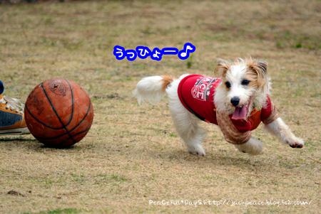 140221_yuasa5.jpg
