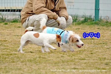 140226_kinokaawa5.jpg