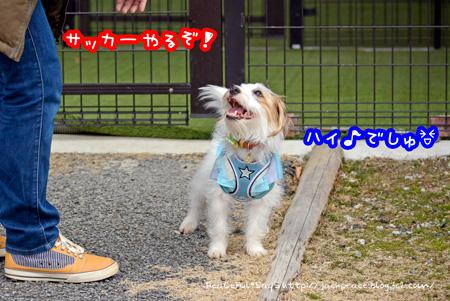 140226_yuasa1.jpg