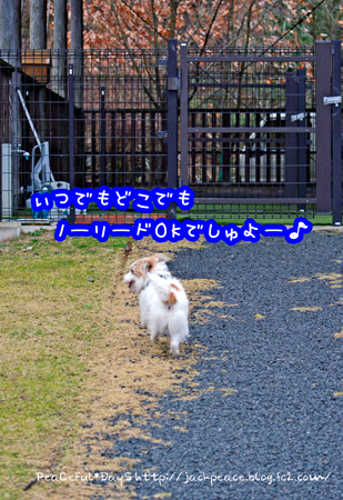 140318_yuasa1.jpg