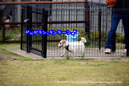 140318_yuasa4.jpg