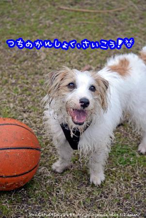 140318_yuasa7.jpg