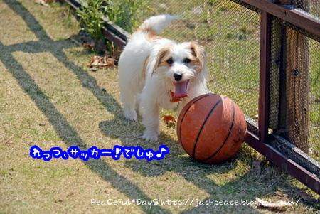 140324_yuasa.jpg