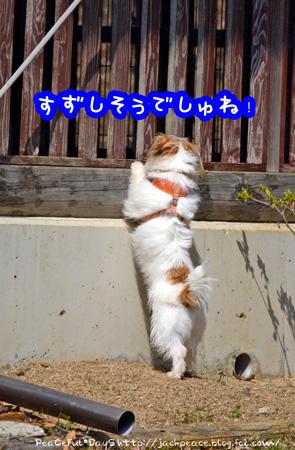 140324_yuasa6.jpg