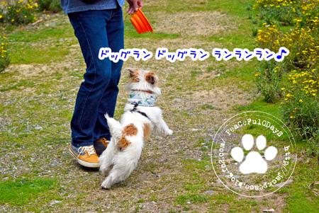 140329_yuasa.jpg
