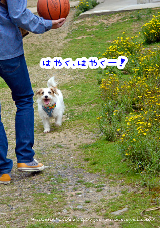 140329_yuasa1.jpg