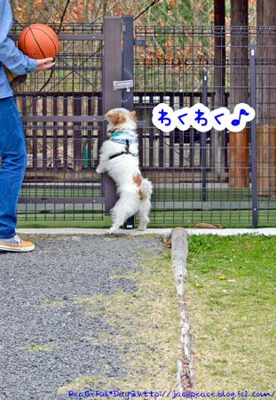 140329_yuasa2.jpg