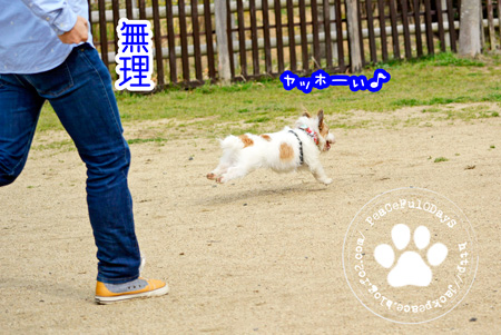 140403_yuasa7.jpg