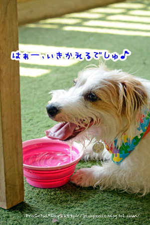 140410_yuasa6.jpg