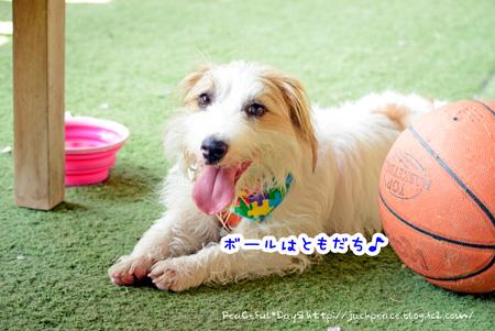 140410_yuasa7.jpg