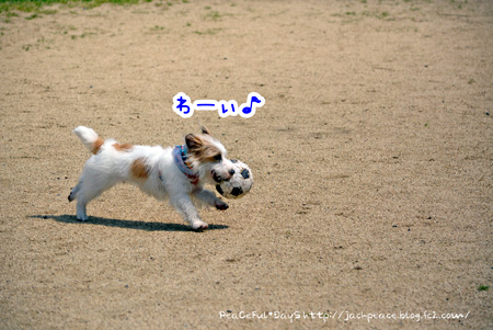 140501_yuasa2.jpg