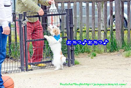 140514_yuasa9.jpg