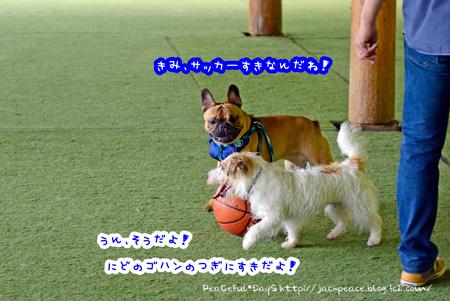 140608_yuasa6.jpg