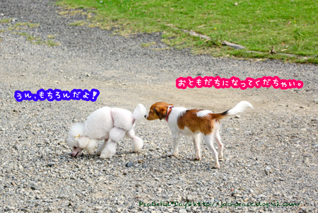 140910_yuasa.jpg