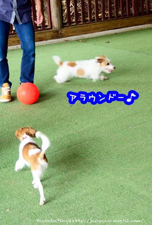 140911_yuasa6.jpg