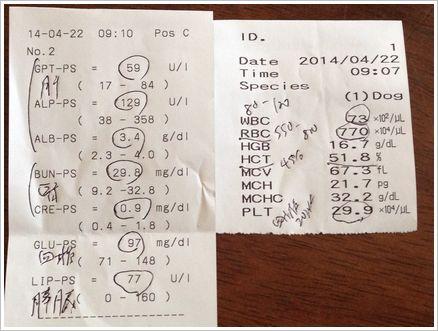 2014-04-22 血液検査結果
