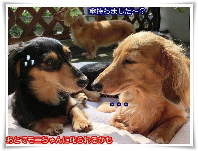 5_201406280926184c5.jpg