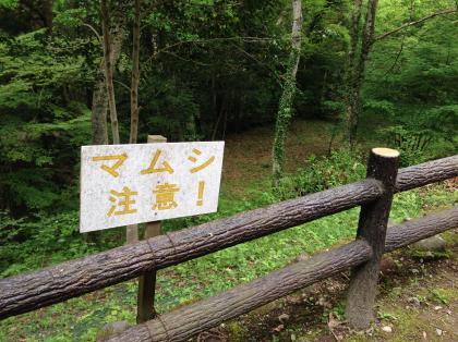 20140506hachioji_2_convert_20140506202706.jpg