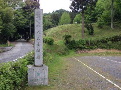 20140506hachioji_4_convert_20140506203125.jpg