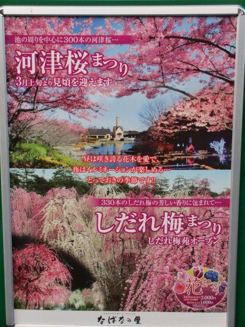 なばなの里2014-9