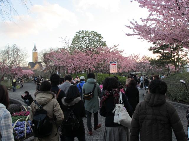 なばなの里2014-11
