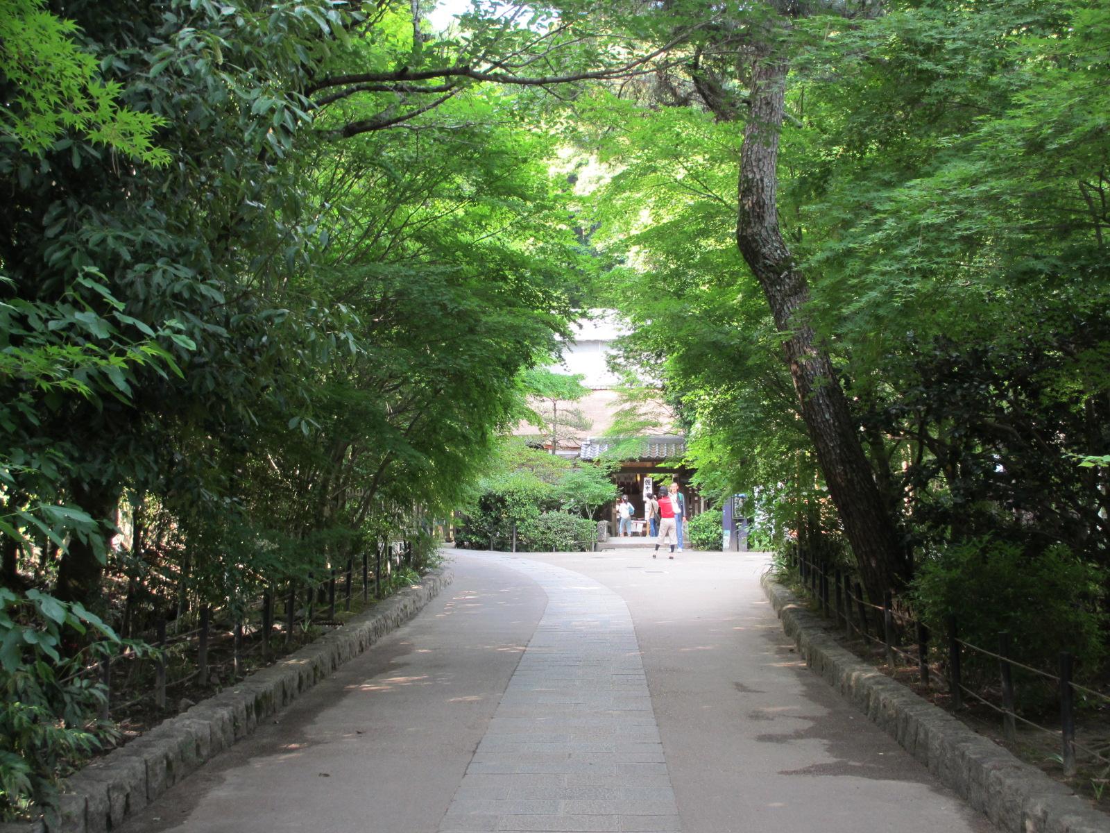 宇治上神社-3