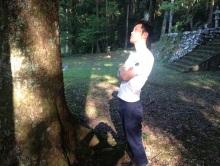 $Ariose 菊田慎也 Blog-いい木だね…菊田慎也