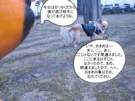 new_CIMG5444.jpg