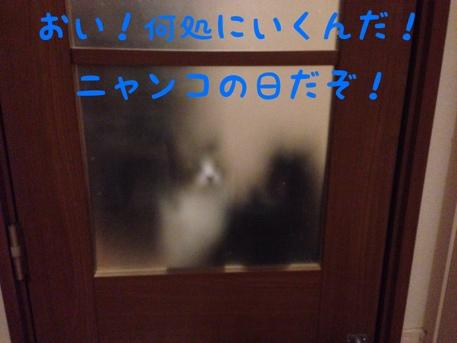 fc2blog_20140223124356cbb.jpg