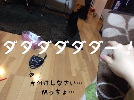 fc2blog_201402231313206b2.jpg