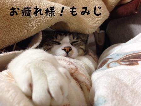 fc2blog_20140227160431c46.jpg