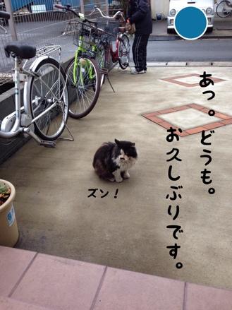 fc2blog_20140303144632a3d.jpg