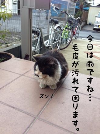 fc2blog_201403031447186c8.jpg