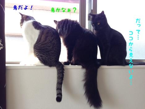 fc2blog_20140404180559854.jpg