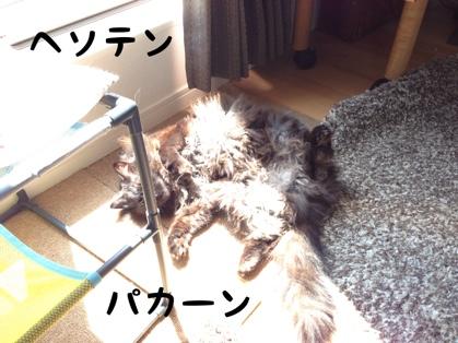 fc2blog_20140408171450171.jpg