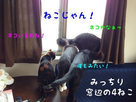fc2blog_2014041509073572e.jpg