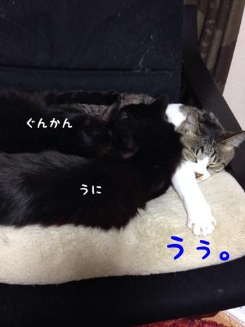 fc2blog_201404180751428fe.jpg