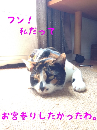 fc2blog_201405011225105d1.jpg