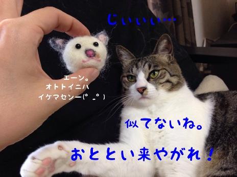 fc2blog_201405161549063eb.jpg