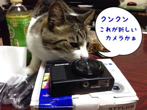 fc2blog_20140609092741012.jpg