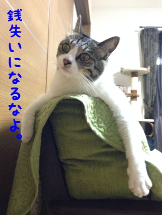 fc2blog_20140609093304a31.jpg